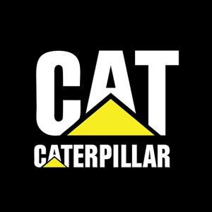 دانلود فونت انگلیسی لوگوتایپ Cat